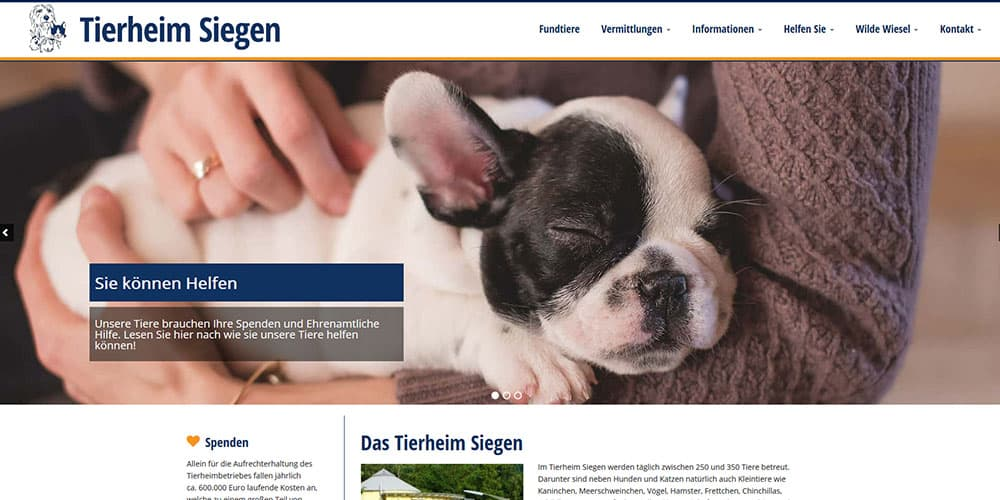 Tierheim Seigen